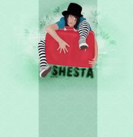 Suitcase by shesta713