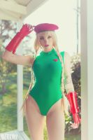 Street Fighter - Cammy - 03 by beethy