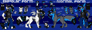 Angeru Reference Sheet 2014 by BipolarWolfy
