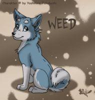WEED in my style by RukiFox