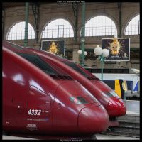 Thalys the Red Nosed FasTrain by HerrDrayer