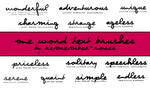 One word text brushes by whatdorosesmean