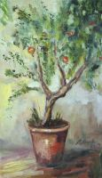Pomegranate tree sketch by Alekra81