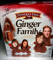 Ginger Family by alotofmillion