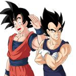 Goku and Vegeta by bocodamondo
