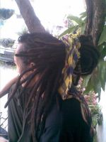 My Natty Dreads by nattymhar