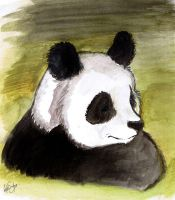 Panda painting by Miss-Melis