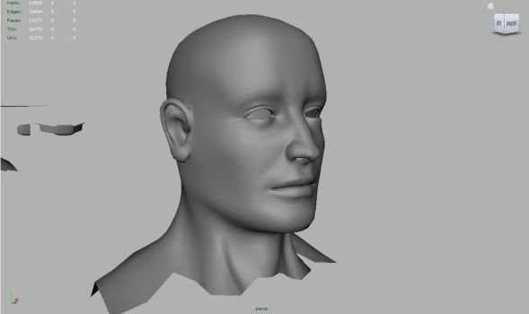 Face Topology practice by DuffMan256