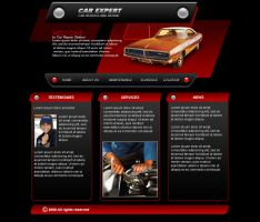 Car service web template by Player-Designer