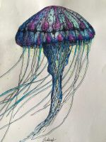 The Jellyfish by Schoenet-Sebastian