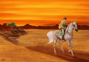 An African Sunset by Tattered-Dreams