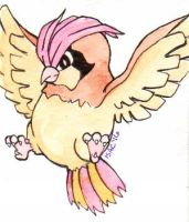 #017 Pidgeotto by isacrae