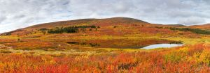 Lake in Fall colors by softflower
