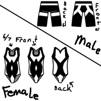 Orca whale inspired swimsuits by Viethra-Schepherd