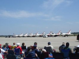 USAF Thunderbirds by Archanubis