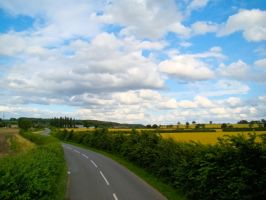 Summer Country Field by samnouvelle