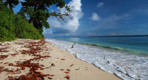 Andaman package tours by flyingsquirrelh