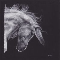 Horse by bwcopy