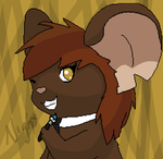 Night Tfm Profile Picture by WarriorxXxCats