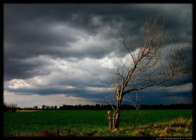 Chasing The Storm 2-1 by VoDooClown