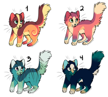 Kitty Adoptables Set 3 -CLOSED- by sherbi