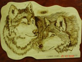 The 2 Wolves by gigino84b