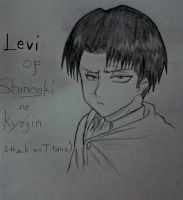 Levi drawing by keichan77