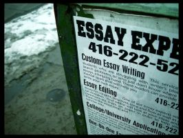Essay Experts by deadward1555