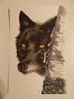 Black wolf head by Dracophilia