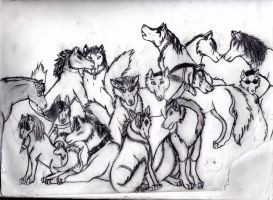 The Pack? Sorta... by ShadowsLie