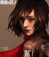 Mikasa Ackerman by screwpixels