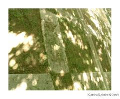 Shadow Floor by kome