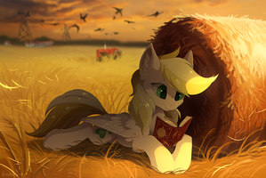 Field by hioshiru-alter
