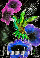 Hummingbird in the space by icbeth
