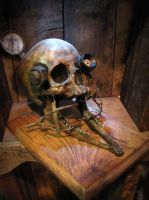 Steampunk skull -experiment 68 by demskicreations