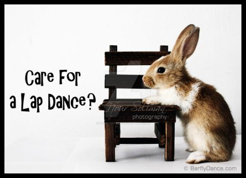 Care for a Lap Dance? by BarflyDance