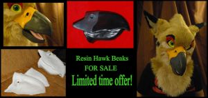 Resin beaks for sale (LIMITED TIME) by Wolfbird