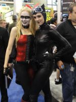 NYCC '10 Harley Quinn Catwoman by zer0guard
