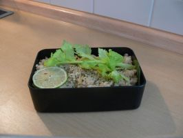 simple bento 1 by maausi