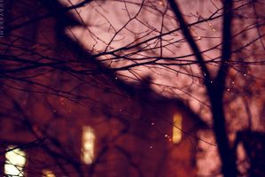 One night in October by Suryakami