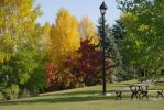 Park in Fall by CJayS