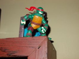 TMNT: Out To Deliver A Message by TMNTFAN85