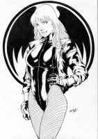 Black Canary Ink by leonartgondim