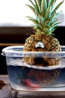 Pineapples live in the Sea by IV47E