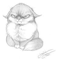 Angry Puss by Emryswolf
