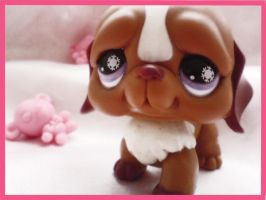 :: Littlest Pet Shop :: by timusz2