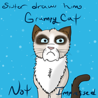 Grumpy Cat 2 by lolpeaceoutlol