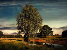 Pastoral Tapestry by DanielBrooksLaurent