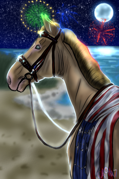 Happy Fourth of July! *Night Edition* by allisonneal