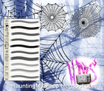10 Spider Web Brushes by Killa-Cary